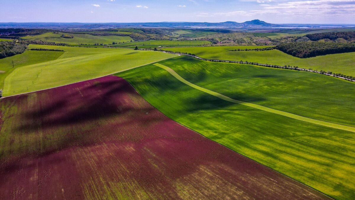 Z ptačí perspektivy: Jetelové pole u Boleradic