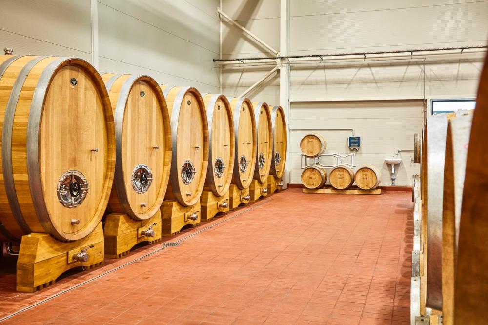 Kam za vínem -vinařské akce