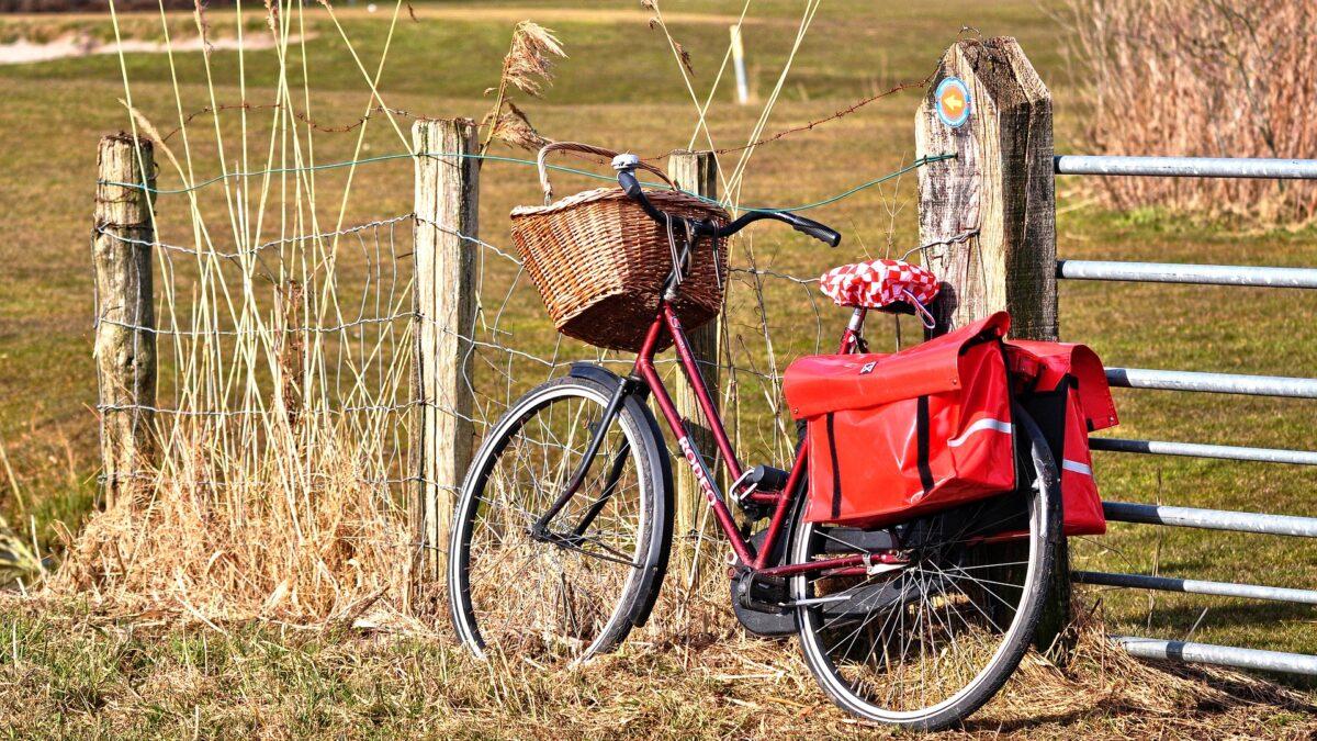 Víkend ve Zlínském kraji nabízí výlet pro cyklisty, lampionovou prohlídku zoo nebo tradiční výstavu pro zahrádkáře