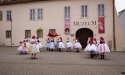 Královničky ve Šlapanicích u Brna. Foto: Vojtěch Hlávka