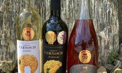 Vinný dům 1 Moderní vinařství z Bzence sbírá medaile na soutěžích u nás i v zahraničí
